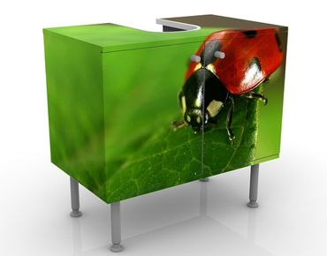 Mobile per lavabo design Lady Bird
