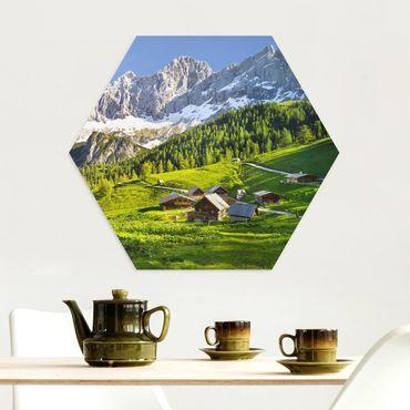 Esagono in Alu-dibond - Stiria Alpine Prato