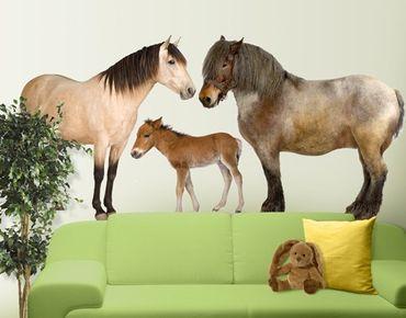Adesivo murale no.999 The Horse Family