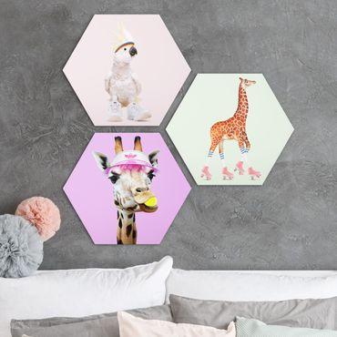 Esagono in forex - Giraffe e Kakadu Sport Set I