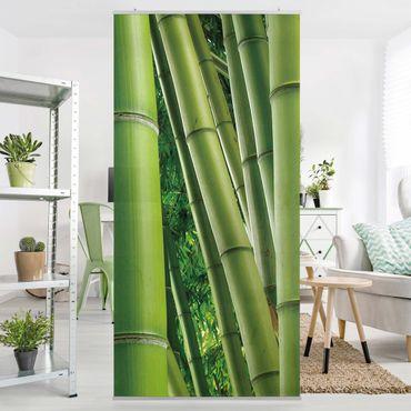 Tenda a pannello Bamboo Trees No.2 250x120cm