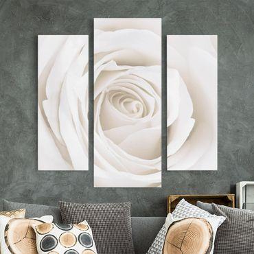 Stampa su tela 3 parti - Pretty White Rose - Trittico da galleria