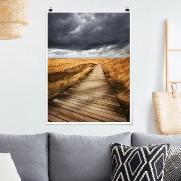 Poster - Way nelle dune - Verticale 4:3