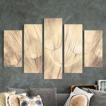 Stampa su tela 5 parti - Dandelions close-up in sepia tones homely