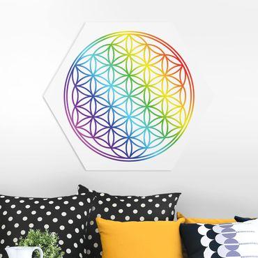 Esagono in forex - Fiore della Vita colore dell'arcobaleno