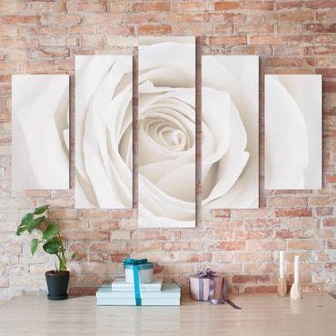 Stampa su tela 5 parti - Pretty White Rose