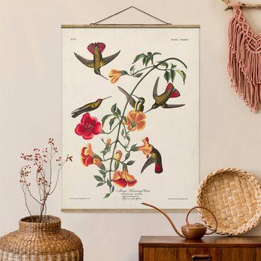 Foto su tessuto da parete con bastone - Consiglio Mango Colibrì Vintage - Verticale 4:3