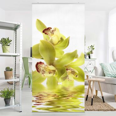 Tenda a pannello Splendid Orchid Waters 250x120cm