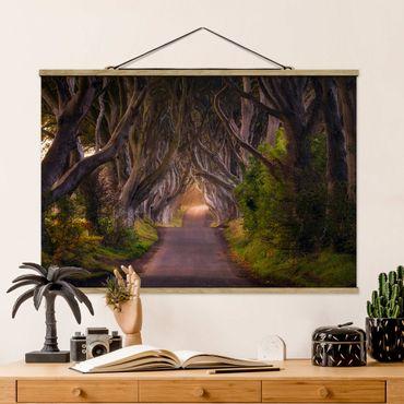 Foto su tessuto da parete con bastone - Tunnel dagli alberi - Orizzontale 2:3