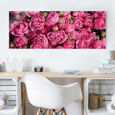 Quadro in vetro - peonie rosa - Panoramico