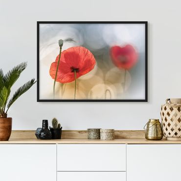 Poster con cornice - Poppies In The Morning - Orizzontale 3:4