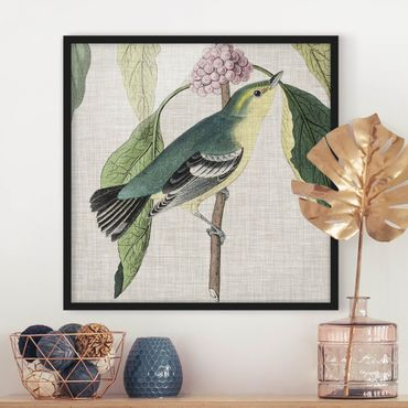 Poster con cornice - Bird On Linen Pink I - Quadrato 1:1