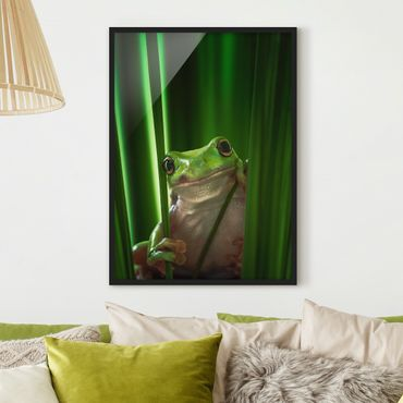 Poster con cornice - Merry Frog - Verticale 4:3