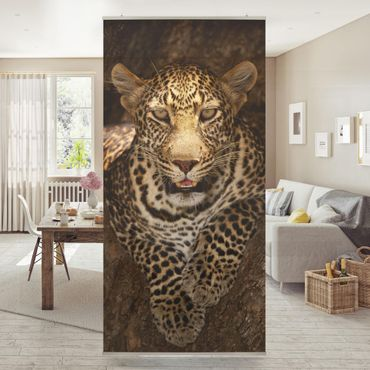 Tenda a pannello - Leopard Resting on a Tree - 250x120cm