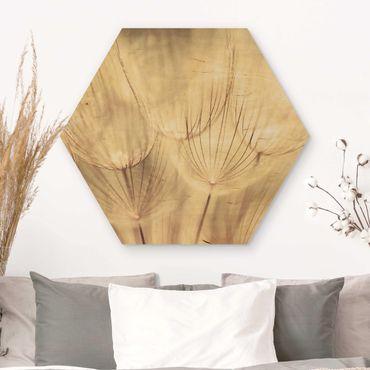 Esagono in legno - Dandelions close-up in tonalità seppia casalinga