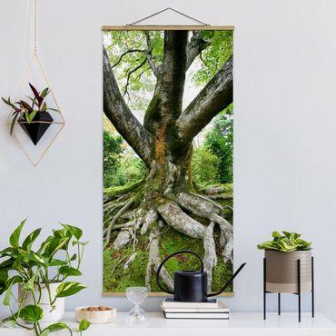 Quadro su tessuto con stecche per poster - vecchio albero - Verticale 2:1