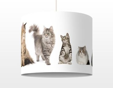 Lampadario design Cat's Gang