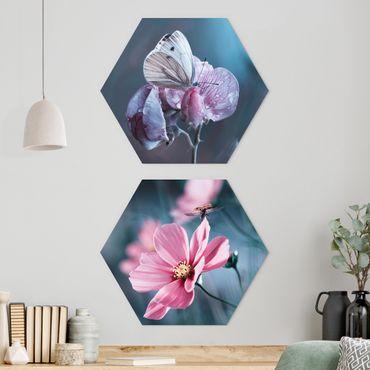 Esagono in forex - Farfalla e coccinella On Flowers