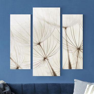 Stampa su tela 3 parti - Gentle Grasses - Trittico da galleria