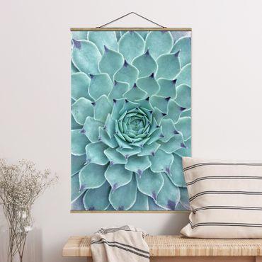 Foto su tessuto da parete con bastone - Cactus Agave - Verticale 3:2