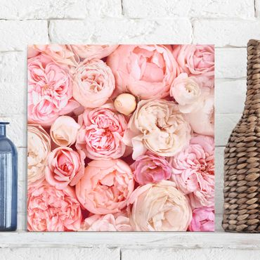 Quadro in vetro - Rose Rose Coral Shabby - Quadrato 1:1