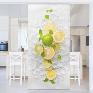 Tenda a pannello - Citrus Fruits On Ice - 250x120cm