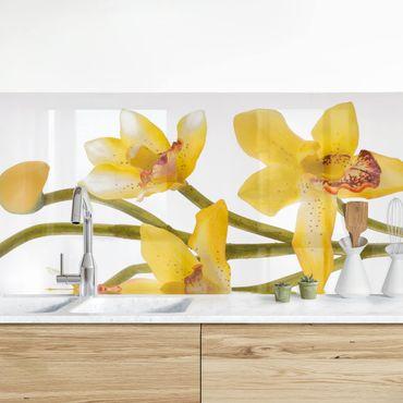 Rivestimento cucina - Orchidea sull'acqua