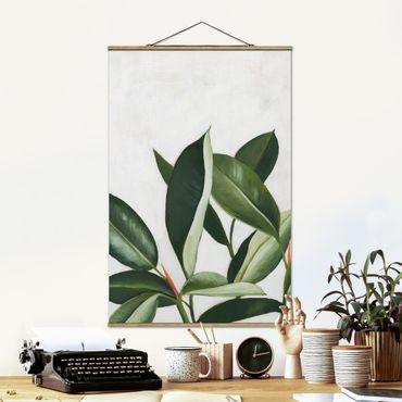 Foto su tessuto da parete con bastone - Piante preferite - Rubber tree - Verticale 3:2