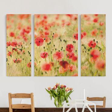 Stampa su tela 3 parti - Summer Poppies - Trittico