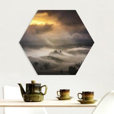 Esagono in forex - Nebbia Waves