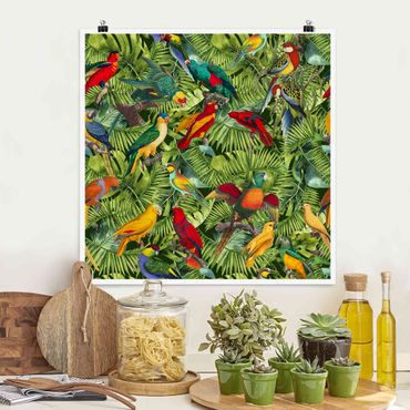 Poster - Colorato collage - Parrot In The Jungle - Quadrato 1:1