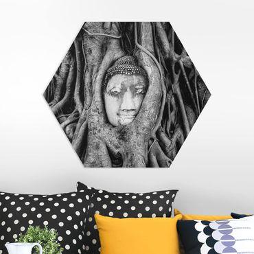 Esagono in forex - Buddha in Ayutthaya dalle radici alberata In Bianco e nero