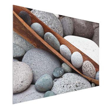 Stampa su Forex - Ancora Vita Con Grey Stones - Orizzontale 2:3