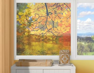 Decorazione per finestre Touching The Water