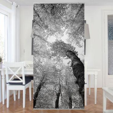 Tenda a pannello Trees of Life II 250x120cm