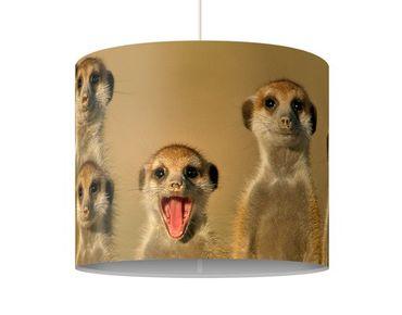 Lampadario design Meerkat Family