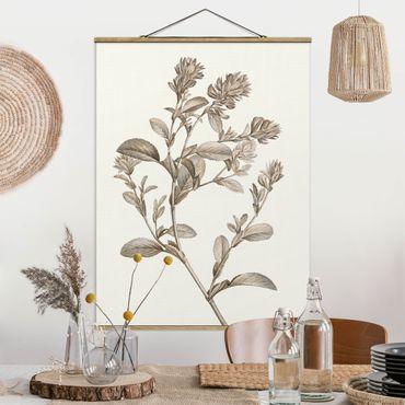 Foto su tessuto da parete con bastone - Botanico Studio In Seppia I - Verticale 4:3