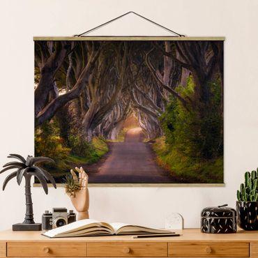 Foto su tessuto da parete con bastone - Tunnel dagli alberi - Orizzontale 3:4