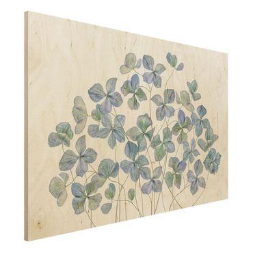 Quadro in legno - Fiori di ortensia blu - Orizzontale 3:2