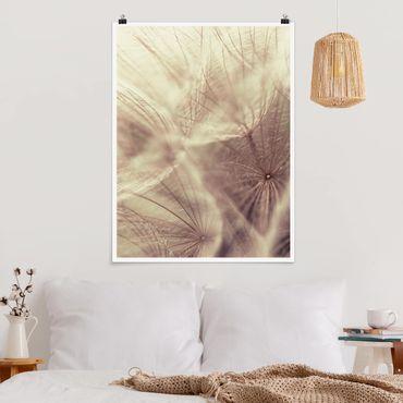 Poster - Dettagliata Dandelion Macro Shot con sfocatura effetto vintage - Verticale 4:3