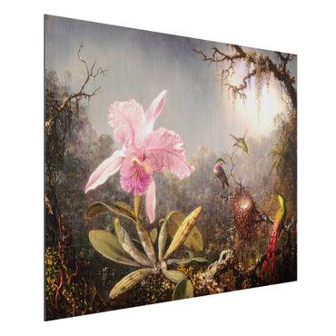 Stampa su alluminio spazzolato - Martin Johnson Heade - orchidea e Tre colibrì - Orizzontale 3:4