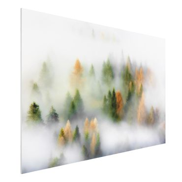 Quadro in forex - Nube di foresta in autunno - Orizzontale 3:2