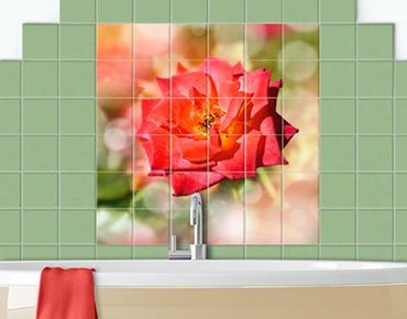 Adesivo per piastrelle - No.YK19 Shining Rose