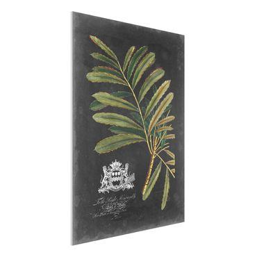 Stampa su Forex - Vintage Royales foglie su fondo nero II - Verticale 4:3