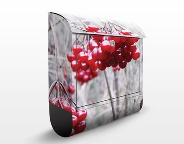 Cassetta postale no.CA42 Forest Fruits 39x46x13cm