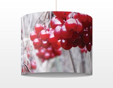 Lampadario design no.CA42 Forest Fruits