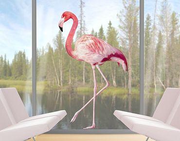 Adesivi da finestra no.YK Pink Flamingo