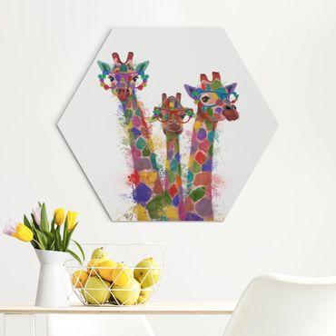 Esagono in Alu-dibond - Arcobaleno Splash Giraffe Trio