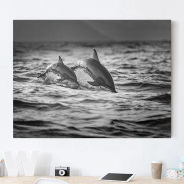 Stampa su tela - Due delfini che saltano - Orizzontale 4:3