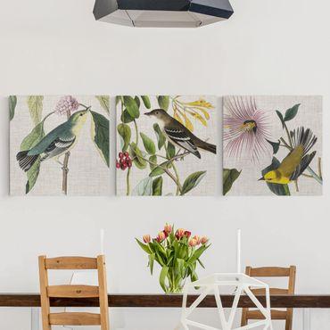 Stampa su tela - Uccelli su lino Set I - Quadrato 1:1